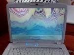 Acer Aspire 5920 Screen Problem