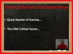 Scentsy Reviews Point To One Critical Factor That You MUST Know